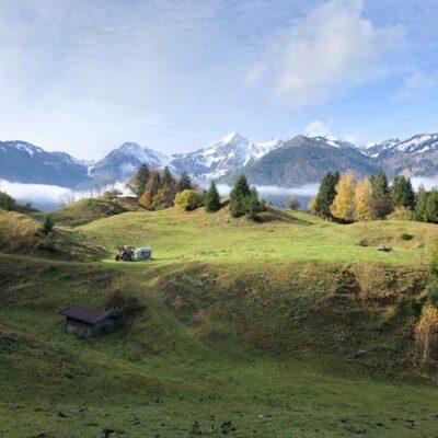 Was für eine Aussicht, unsere Weide am Achberg.