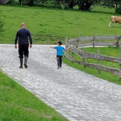 Mit Thomas zum Kühe holen